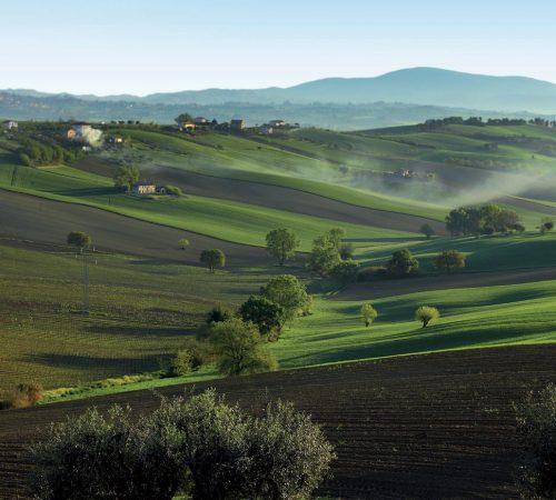 marche bellezze le colline agriturismo valle del metauro